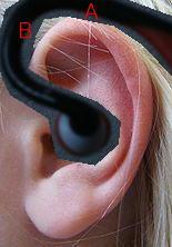 ear3.jpg